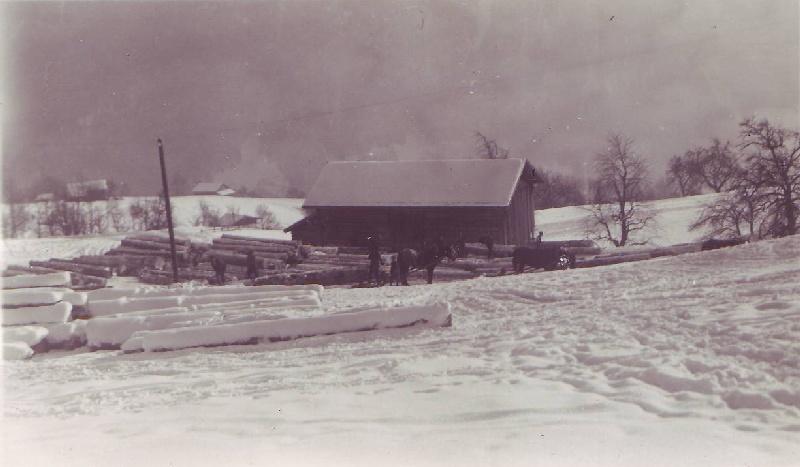 Holzlagerplatz Nüügada