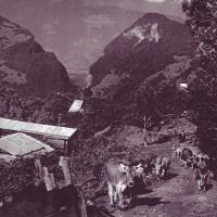 Oberli um 1930