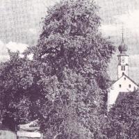 Untere Dorfstrasse 1948